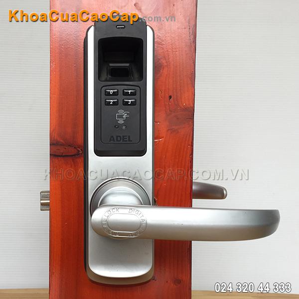 Khóa cửa điện tử Adel 5600